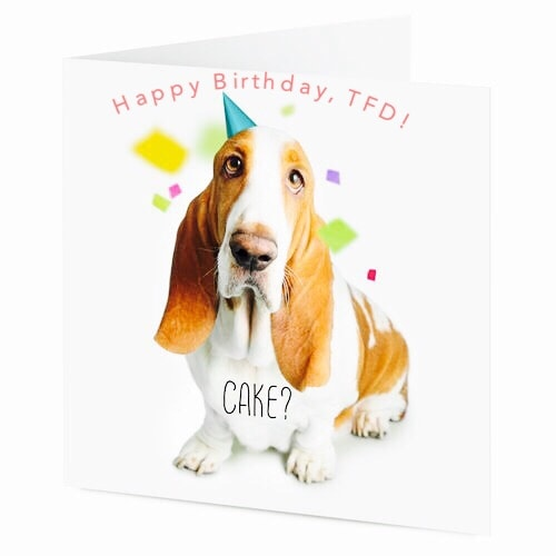 Happy 2nd Birthday, TFD!