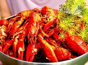 The Hirshon Swedish Crayfish With Dill Feast – Kräftor Med Dill