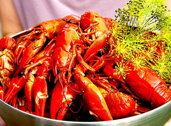 The Hirshon Swedish Crayfish With Dill Feast - Kräftor Med Dill