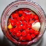 The Hirshon Brazilian Pickled Biquinho Peppers - Conserva de Pimenta Biquinho