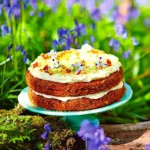 The Hirshon Ruby-Throated Hummingbird Cake