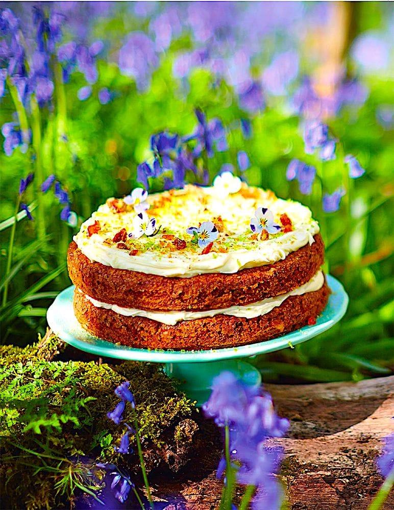 The Hirshon Ruby-Throated Hummingbird Cake