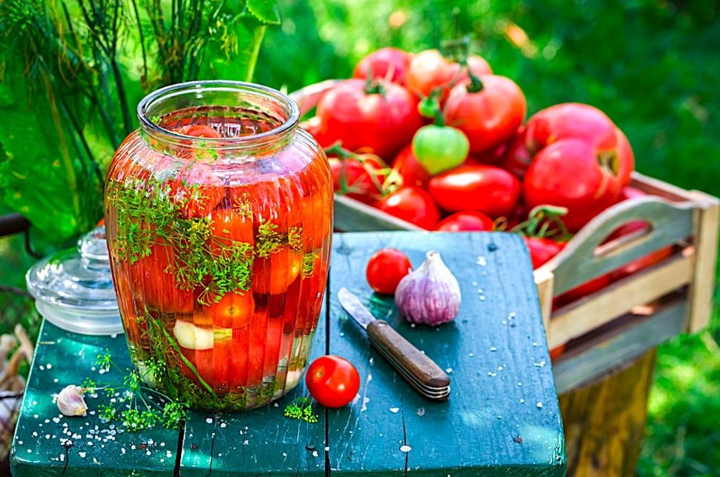 The Hirshon Russian Pickled Tomatoes – Маринованные помидоры