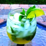 The Hirshon Iranian Cooling Thirst Quencher - سکنجبین