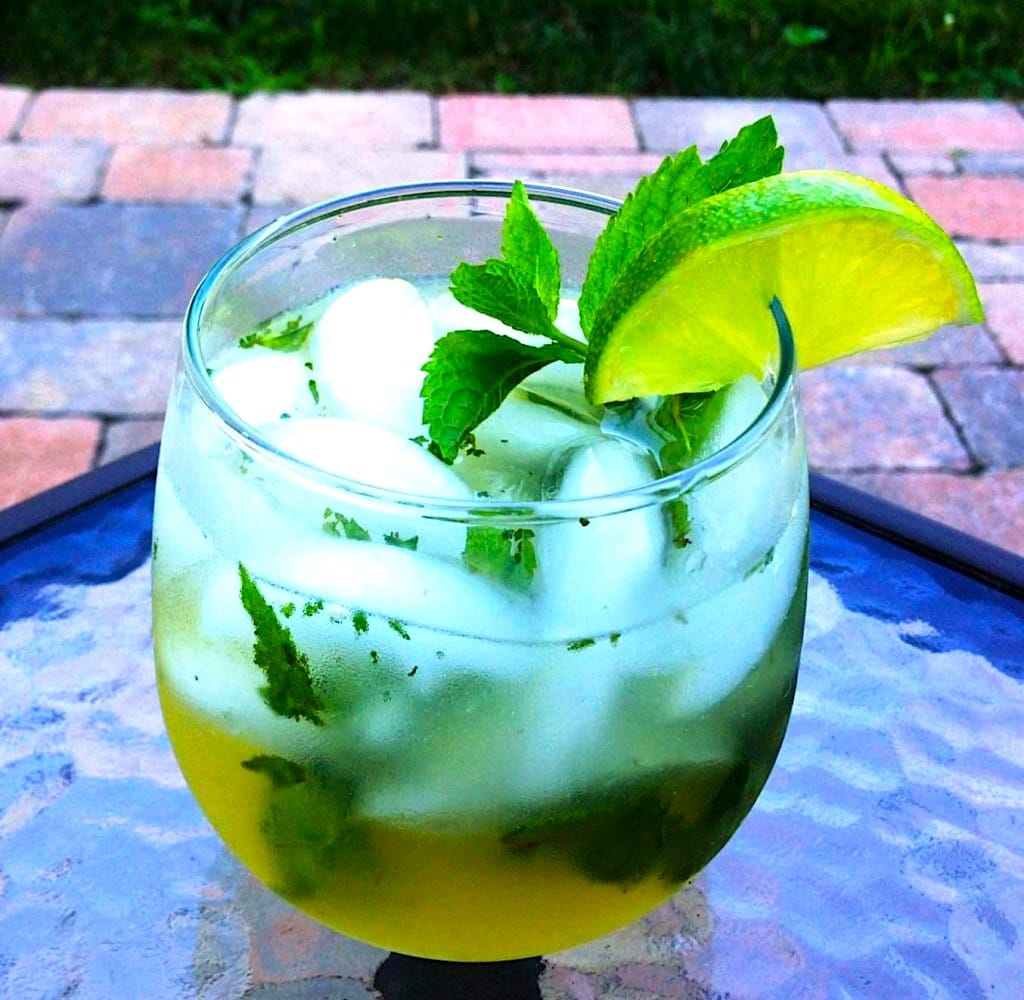 The Hirshon Iranian Cooling Thirst Quencher – سکنجبین