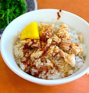 The Hirshon JiaYi Taiwanese Turkey Rice – 嘉義火雞肉飯