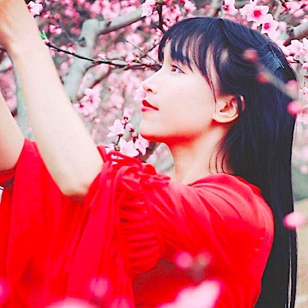 Li Ziqi - the 'Fairy Princess' of China!