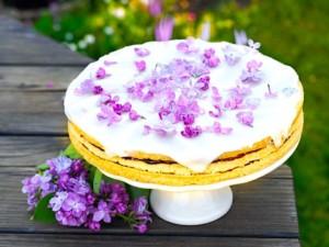 The Hirshon Latvian Alexander's Torte – Aleksandra Kūka
