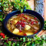 The Hirshon Siberian Reindeer Soup - Суп из сибирского оленя